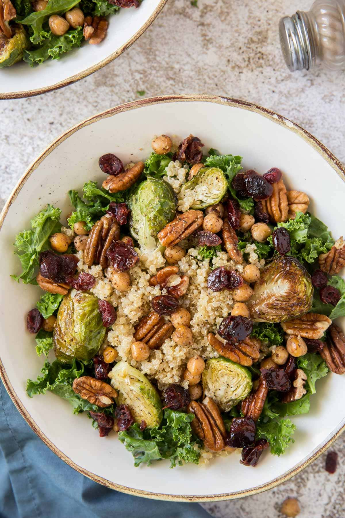 kale, pecans, brussels sprouts, cranberries, white plate, blue napkin