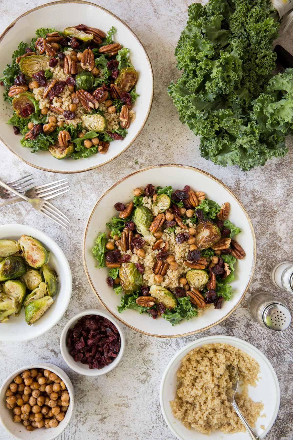 kale, pecans, brussels sprouts, cranberries, white plate, salt and pepper shakers, forks
