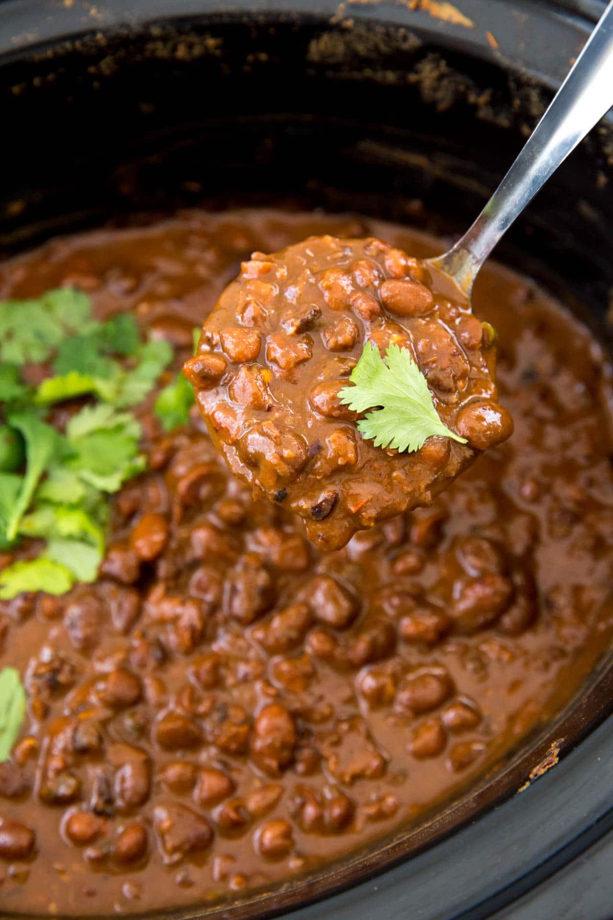ladle, slow cooker, pinto beans