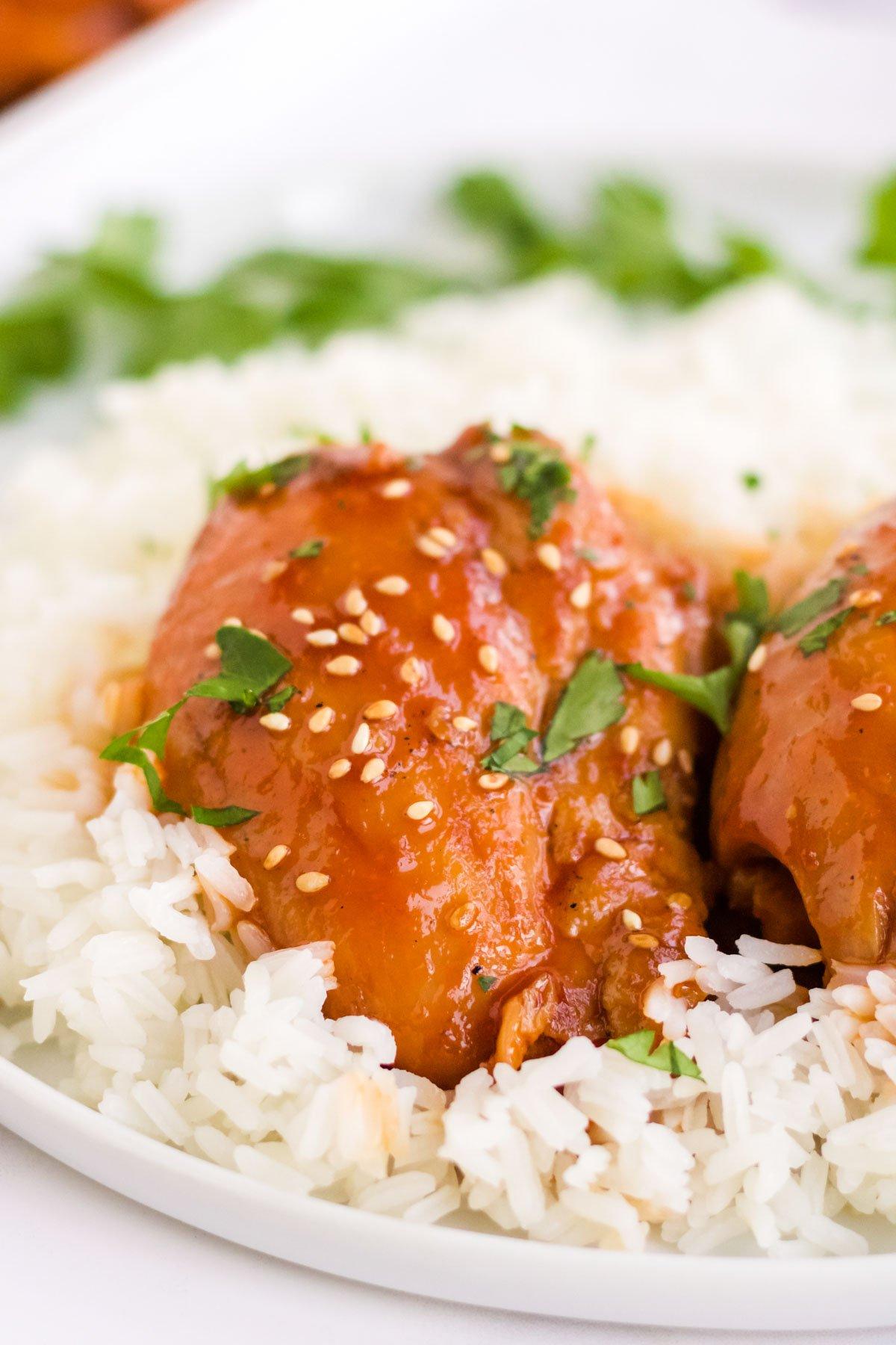 saucy chicken thigh over rice