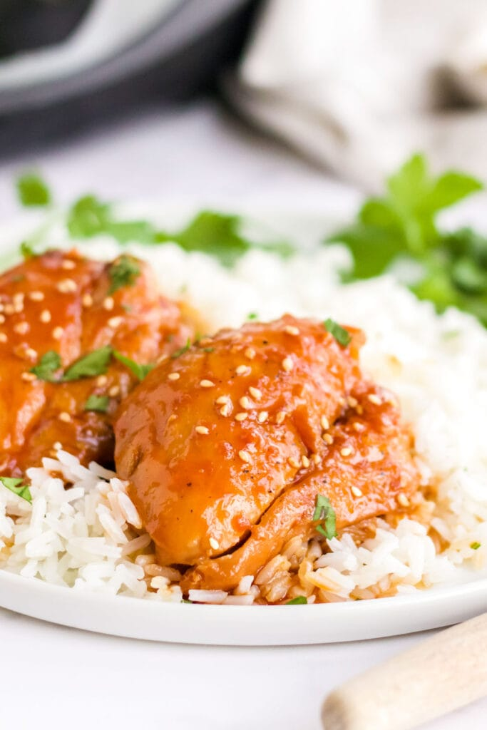 2 chicken thighs over a bed of rice